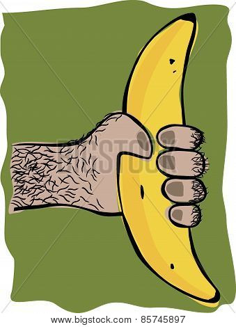Ape Hand With Banana
