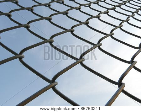 Wired Mesh Fence