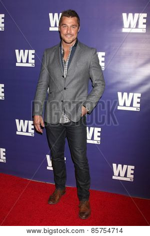 LOS ANGELES - MAR 19:  Chris Soules at the WE tv Presents