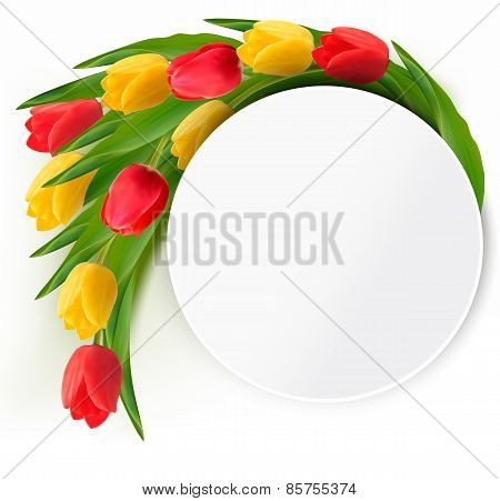 Yellow And Red Tulips Holiday Background. Vector,