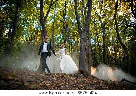 Young wedding couple goes on a picturesque forest. Husband leads