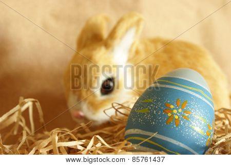 Easter Bunnys Egg