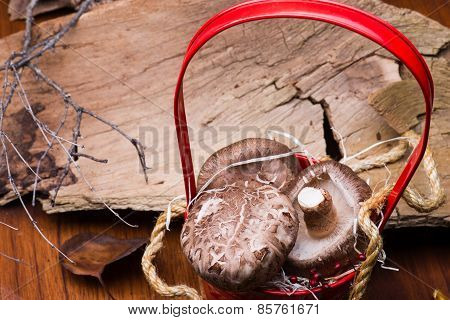 Mushrooms In Red Basket