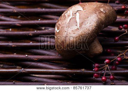 Mushrooms On Wicker Background