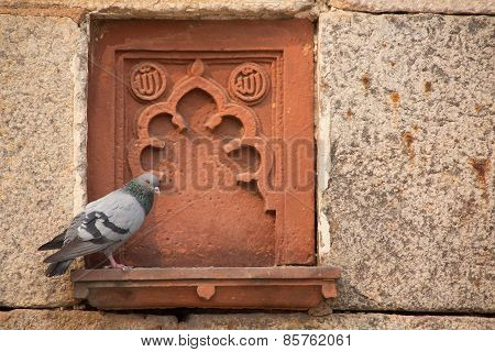 Detail Of Isa Khan Niyazi Tomb Decoration With A Sitting Pigeon, Humayun's Tomb Complex, Delhi, Indi