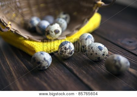 Easter quail eggs in the basket on rustic wooden background. Selective soft focus