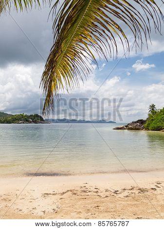 Vertical Beautiful Seascape