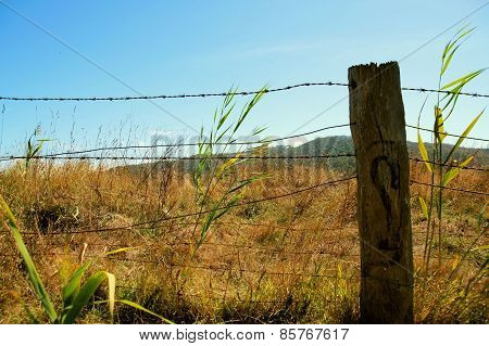Wire fencing around a farm.