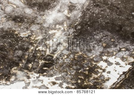 Grunge Wall Texture And Background