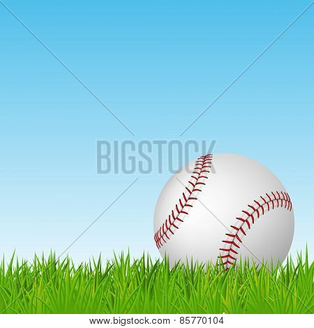 Baseball On Green Grass. Vector Background.