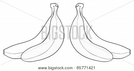 Delightful Garden - Bunch Of Two Bananas