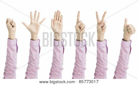 Female Hand Gestures Variation