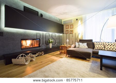 Fireplace In Cozy Drawing Room