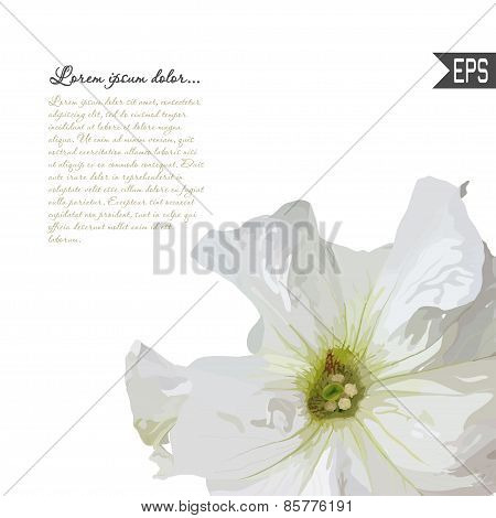 Floral invitation card with beautiful spring flower and banner style. Perfect for wedding, greeting