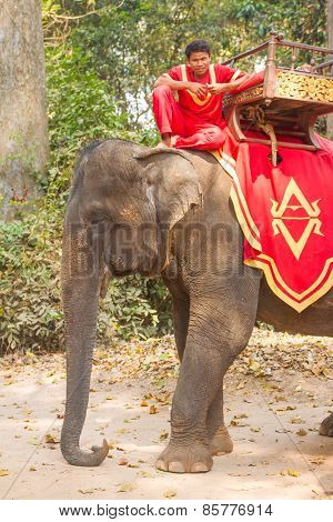 SIEM REAP,CAMBODIA-Feb 24, 2015:An unidentified cambodian poses for tourists elephant riding in Angkor Wat,on Feb 24, 2015,Siem Reap,Cambodia.Angkor is the country's prime attraction for visitors.