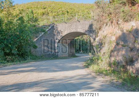 Railroad Bridge In The Montagu Pass
