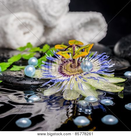 Spa Still Life Of Passiflora Flower, Branches, Stacked Towels, Zen Basalt Stones With Drops And Pear
