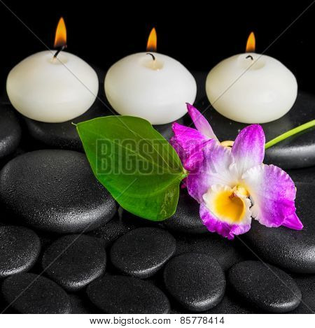 Spa Background Of Row White Candles, Orchid Flower Dendrobium And Green Leaf On Black Zen Stones Bac
