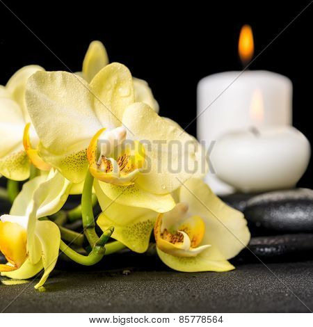 Beautiful Spa Background Of Yellow Orchid Phalaenopsis And Candles On Black Zen Stones With Drops, C