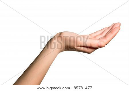 Woman's hand over white background
