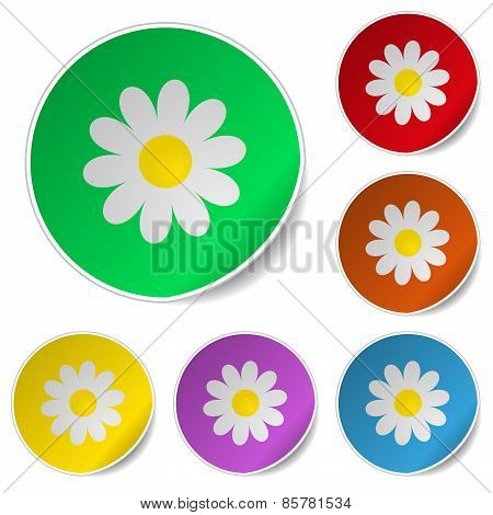 Floral Set Of Round Glossy Stickers