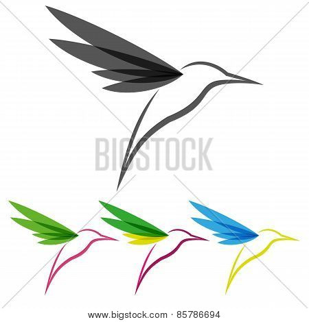Colored Stylized Colibri
