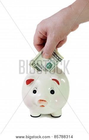 Female Hand Putting Five-dollar Bill Into A Piggy Bank