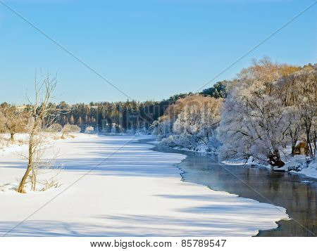 Trees in frost along the river in winter