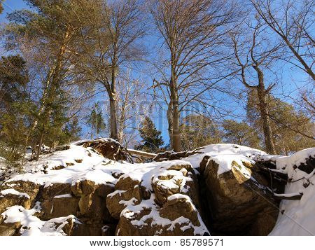 Winter snow-covered rocks in sunny weather
