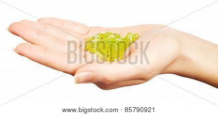 Body Scrub In Woman Hand