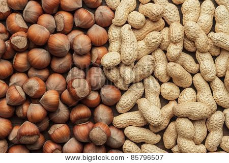 peanuts and hazelnuts