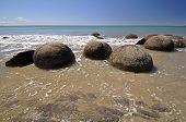 stock photo of maori  - Moeraki Boulders are perfectly spherical rocks on the beach at Moeraki north of Dunedin near Oamaru - JPG