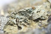 pic of iron pyrite  - Macrophoto Pyrite or iron pyrite is an iron sulfide with the chemical formula FeS2