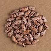 image of pinto bean  - Top view of circle of pinto beans against brown vinyl background - JPG