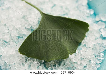 Ginkgo Biloba Leaf And Bath Salt