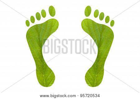 Green Foot Print Human