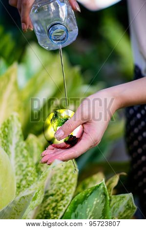 Young woman`s hands holding earth and sprinkle water on earth. Ecology concept. Elements of this ima