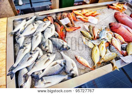 Fresh Fish On Ice. Fish Market On Madeira Island