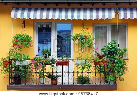Yellow Building Wall With Balcony Flowery Garden