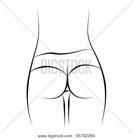 Vector ass