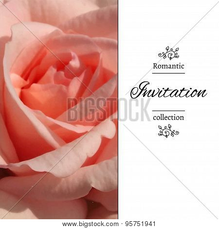 Invitation card with a pale pink rose.
