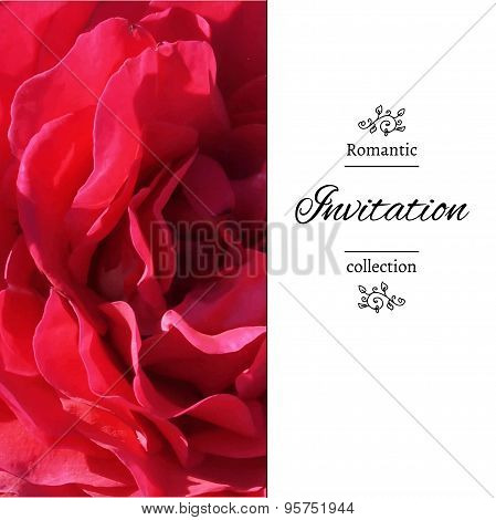 Invitation card with a red rose.