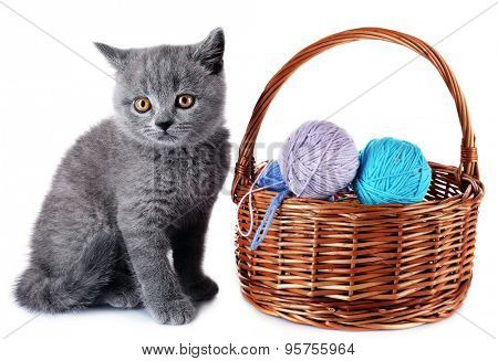 Cute gray kitten and wicker basket with skeins of thread isolated on white