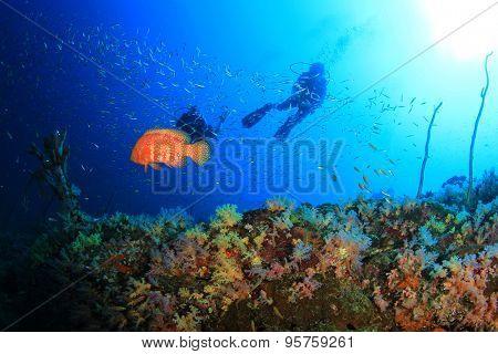 Scuba Diving on Coral Reef Underwater in Ocean