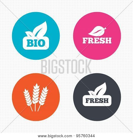 Natural fresh Bio food icons.