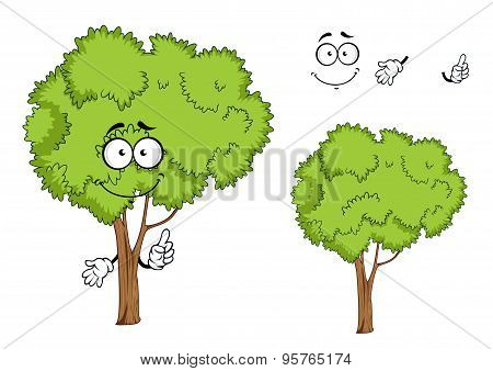 Cartoon isolated green tree character