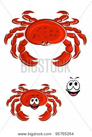 Red crab animal cartoon character