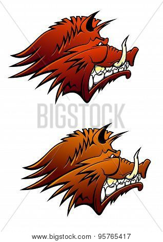 Wild boar mascot with big tusks