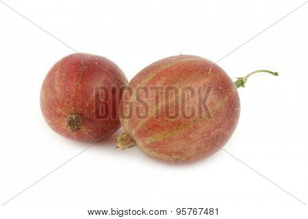 gooseberries (Ribes uva-crispa) on a white background