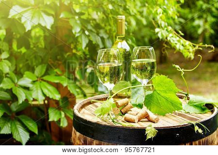 Garden with white wine and bottles